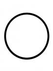 O-ring for Blue Filter Housing